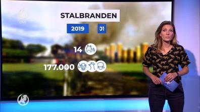 cap_Hart van Nederland - Laat_20190908_2230_00_01_29_19