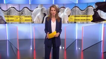 cap_Gouden Televizier-Ring Gala 2019 (AVROTROS)_20191009_2110_00_57_10_569