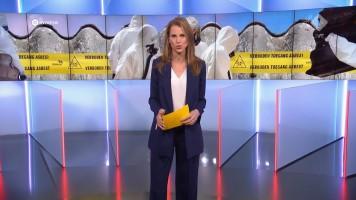 cap_Gouden Televizier-Ring Gala 2019 (AVROTROS)_20191009_2110_00_57_10_575