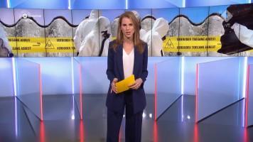 cap_Gouden Televizier-Ring Gala 2019 (AVROTROS)_20191009_2110_00_57_11_570