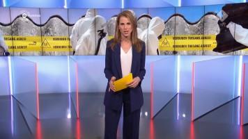 cap_Gouden Televizier-Ring Gala 2019 (AVROTROS)_20191009_2110_00_57_11_572