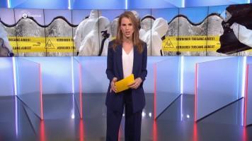 cap_Gouden Televizier-Ring Gala 2019 (AVROTROS)_20191009_2110_00_57_11_577