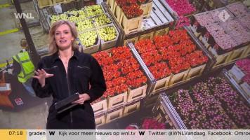 cap_Goedemorgen Nederland (WNL)_20200213_0707_00_11_41_117